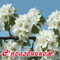 Поздравление  со праздником весны да труда
