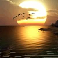 Солнце отражение на воде.