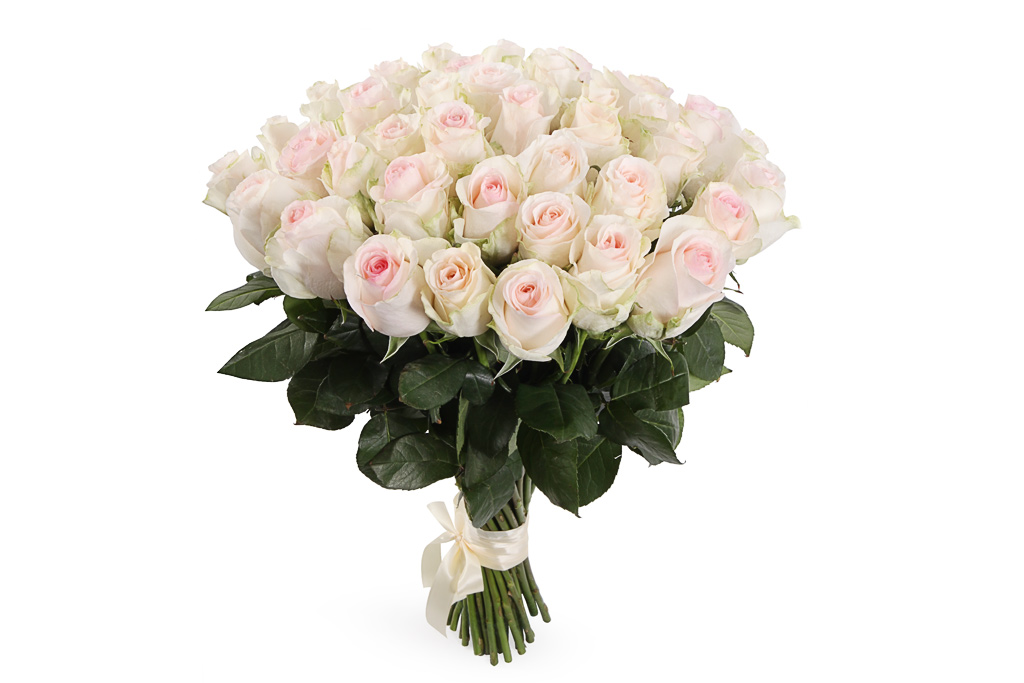 Букет из белых роз - Цветы картинки